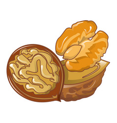 walnuts icon cartoon style vector image