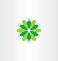 fresh flower with green leaves vector image