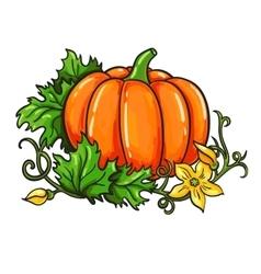 Pumpkin drawing Isolated cartoon vegetable vector image