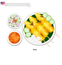 Satay or Malaysian Style Barbecue vector image