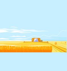 combines harvesting fields grain vector image