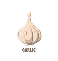Logo garlic farm design vector