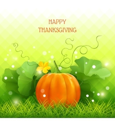Pumpkin Thanksgiving card vector image