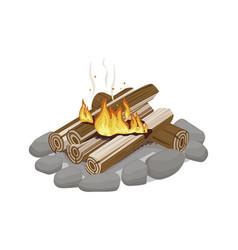 start firewood surrounded stones burning vector image