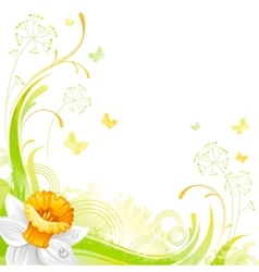 Floral summer background with daffodil flower vector image