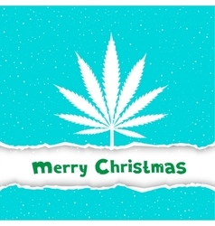 Christmas cannabis congratulation vector