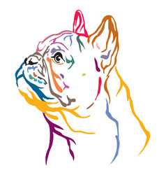 Colorful decorative portrait french bulldog vector