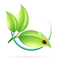 Green sprout with leaves vector