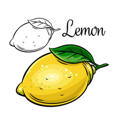 Lemon drawing icon vector