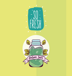 So fresh mason jar vector