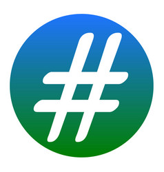hashtag sign white icon in vector image vector image