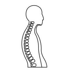 human spine icon outline style vector image