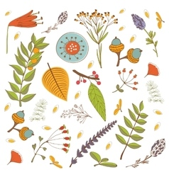 Autumn foliage set with twigs flowers and leaves vector
