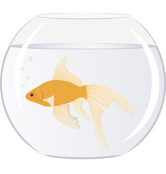 Goldfish in bowl with bubbles vector