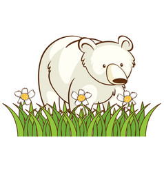 isolated picture polar bear in garden vector image
