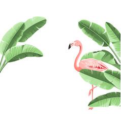 summer tropical frame exotic banana leaf design vector image