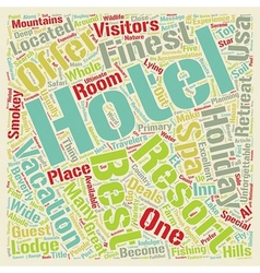 The Best Five Hotels Of USA text background vector image