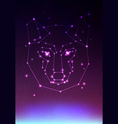 wolf constellation face of a vector image