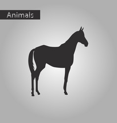 black and white style icon of horse vector image