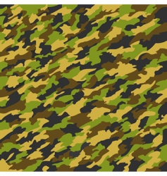 camouflage texture vector image vector image