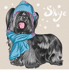 cartoon hipster cute dog Skye Terrier vector image vector image