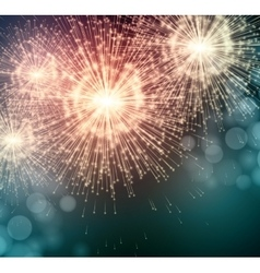 Celebrate party sparkler little fireworks vector image