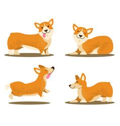 playing corgi dog set of icons vector image