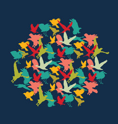 bright birds color silhouettes round in squear vector image