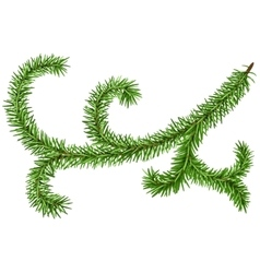 Decoration fir branch for Christmas wreath Green vector image