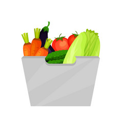 gray container with ripe vegetables natural and vector image