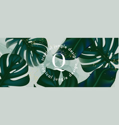 Monstera leaves horizontal banner wide evergreen vector