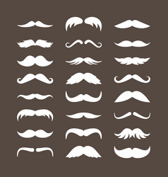 mustache set stylish look curly white vector image