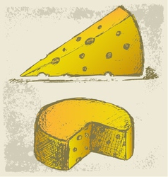 Piece cheese vector image