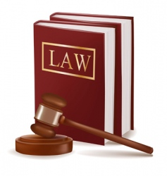 judge gavel and law books vector image vector image