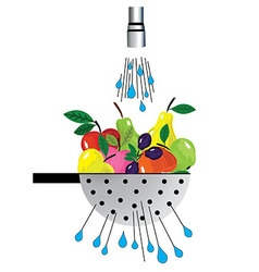 Metal colander and fruit of colander with fruit vector image