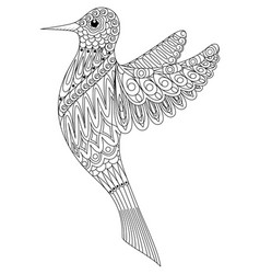 adult coloring book a bird vector image