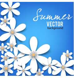 beautiful background with white flowers vector image