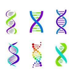 colorful dna spirals bright vector image