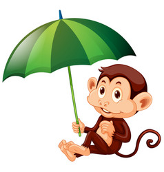 Cute monkey with green umbrella on white vector