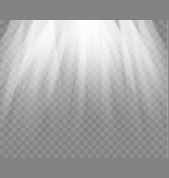 Spotlight isolated on transparent background vector