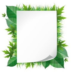 paper on grass vector image vector image