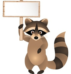 raccoon cartoon with blank sign vector image vector image