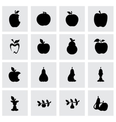 apple and pear icon set vector image
