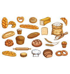 Bread bakery sketch and pastry baked food icons vector