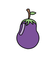 colorful vegetable eggplant icon vector image