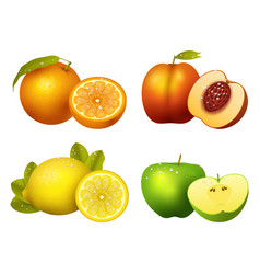 fresh fruits slice realistic juicy healthy vector image