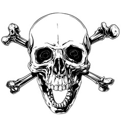 Graphic human skull with crossed bones vector