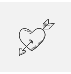 Heart pierced with arrow sketch icon vector image