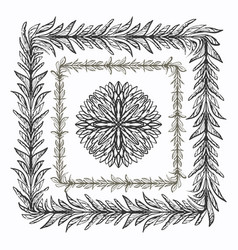 Ink hand drawn floral brushes for ornate frames vector