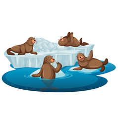 isolated picture brown seals vector image